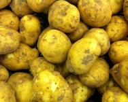 Majorcan New potatoes