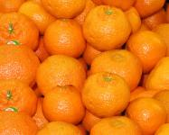 Clementines (small)